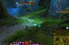gw2-invisible-king-auric-basin-achievement-guide-3