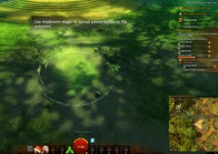 gw2-mushroom-power-auric-basin-achievement-guide