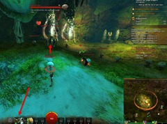 gw2-tarir-challene-winner-auric-basin-achievement-guide-7