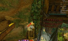 gw2-the-golden-chicken-auric-basin-achievement-guide-6