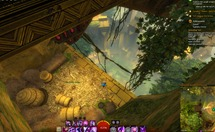 gw2-the-golden-chicken-auric-basin-achievement-guide-7