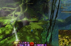 gw2-treetop-retriever-auric-basin-achievement-guide-19
