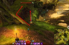 gw2-treetop-retriever-auric-basin-achievement-guide-3