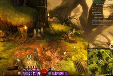 gw2-treetop-retriever-auric-basin-achievement-guide-5