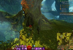gw2-treetop-retriever-auric-basin-achievement-guide-7