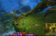 gw2-treetop-retriever-auric-basin-achievement-guide-8