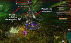 gw2-vinetooth-hunter-auric-basin-achievement-guide-2