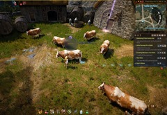 bdo-making-milk-tea-guide-19