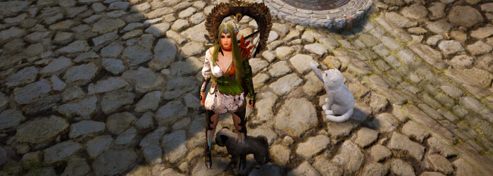 Black Desert Pets and Pet Food Guide
