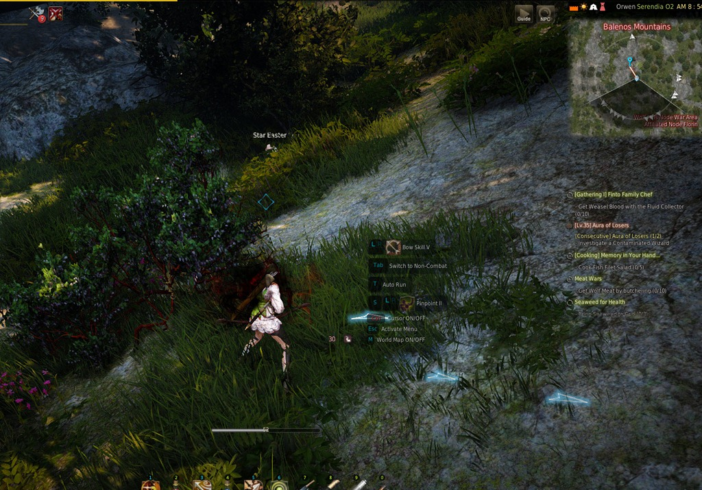 Bdo how to find node manager
