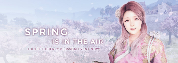 Black Desert Cherry Blossom Event Guide