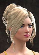 gw2-new-hair-color-dry-wheat-2