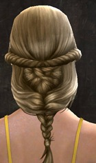 gw2-new-hair-color-golden-brown