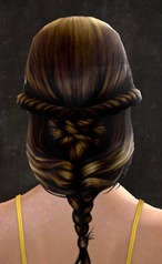 gw2-new-hair-color-maghony