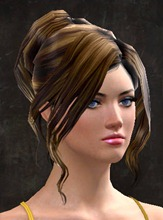 gw2-new-hair-color-rich-chocolate-2