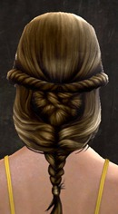 gw2-new-hair-color-rich-chocolate