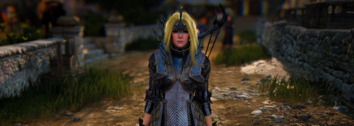 Black Desert Pre-Order Costumes and Weapons Gallery