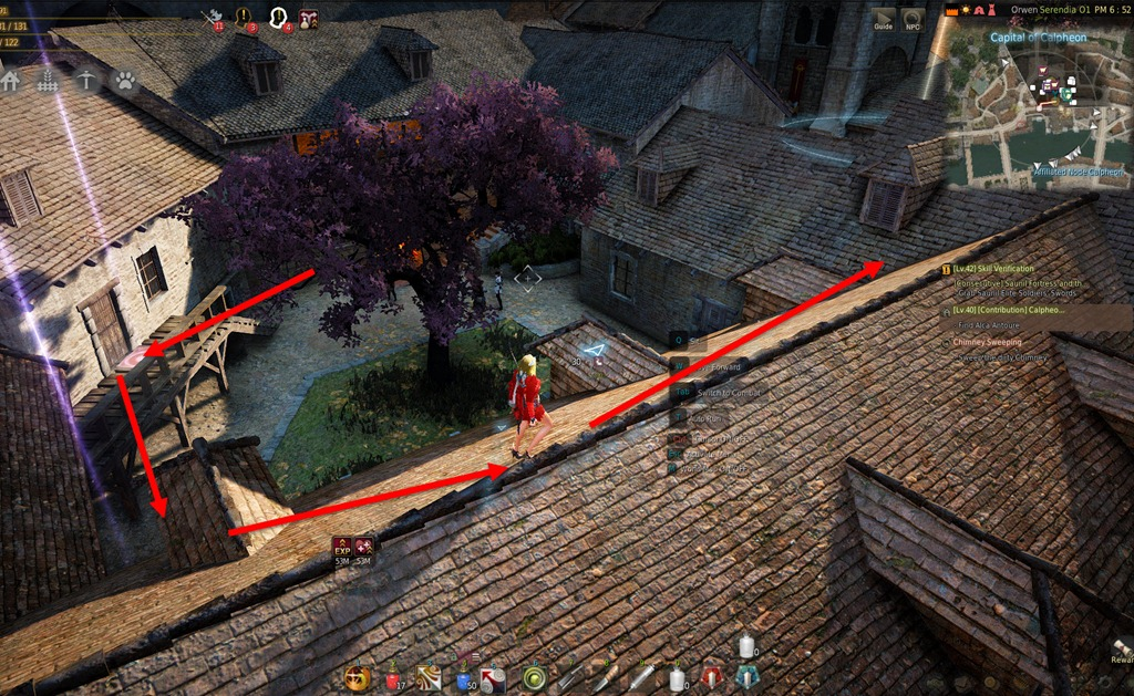 how to clean chimney bdo