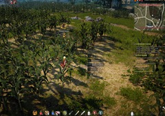 bdo-daily-plantation-wheat-cart