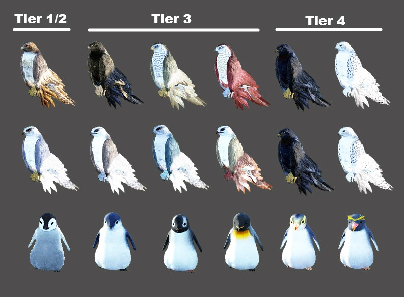 bdo-pet-appearence-change-coupon-birds
