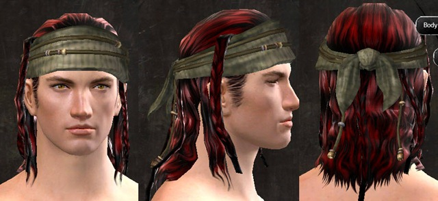 Gw2 New Hairstyles Verdant Executor Outfit And Shining Blade
