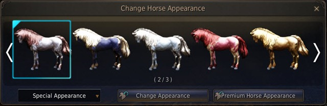 bdo-horse-appearence-coupon-2