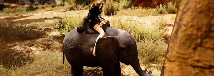 Black Desert Miniature Elephant Mount Guide