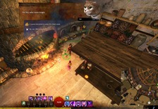gw2-hungry-cats-locations-10_thumb.jpg
