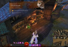 gw2-hungry-cats-locations-31_thumb.jpg