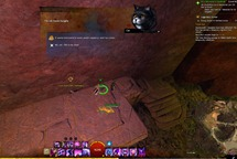 gw2-hungry-cats-locations-33_thumb.jpg