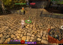 gw2-hungry-cats-locations-3_thumb.jpg