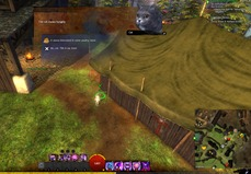 gw2-hungry-cats-locations-7_thumb.jpg