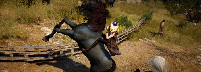 Black Desert Horse Racing Guide