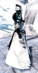 gw2-braham's-wolfblood-outfit-2