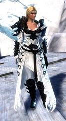 gw2-braham's-wolfblood-outfit-4
