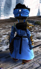 gw2-braham's-wolfblood-outfit-asura-female-3