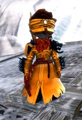 gw2-braham's-wolfblood-outfit-asura-male-3