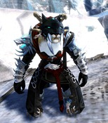 gw2-braham's-wolfblood-outfit-charr-female