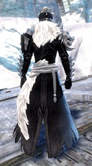 gw2-braham's-wolfblood-outfit-human-male-3