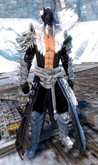 gw2-braham's-wolfblood-outfit-human-male