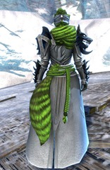 gw2-braham's-wolfblood-outfit-norn-female-3