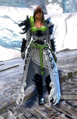 gw2-braham's-wolfblood-outfit-norn-female-4