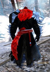 gw2-braham's-wolfblood-outfit-norn-male-3