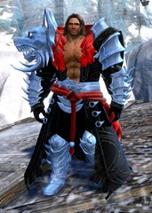 gw2-braham's-wolfblood-outfit-norn-male-4