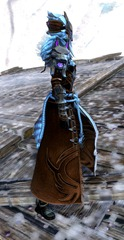 gw2-braham's-wolfblood-outfit-sylvari-female-2