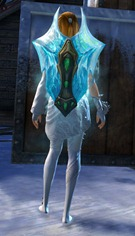 gw2-frostforged-shield-skin-2