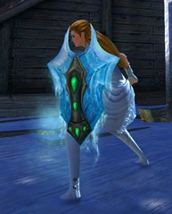 gw2-frostforged-shield-skin-3