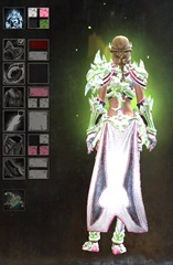 gw2-ice-encasement-outfit-female-dyes-2