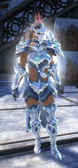 gw2-ice-encasement-outfit-norn-female
