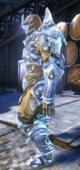 gw2-ice-encasement-outfit-norn-male-2